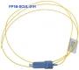 FP1B-SCUL-01H